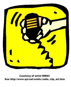 Mic WM8C